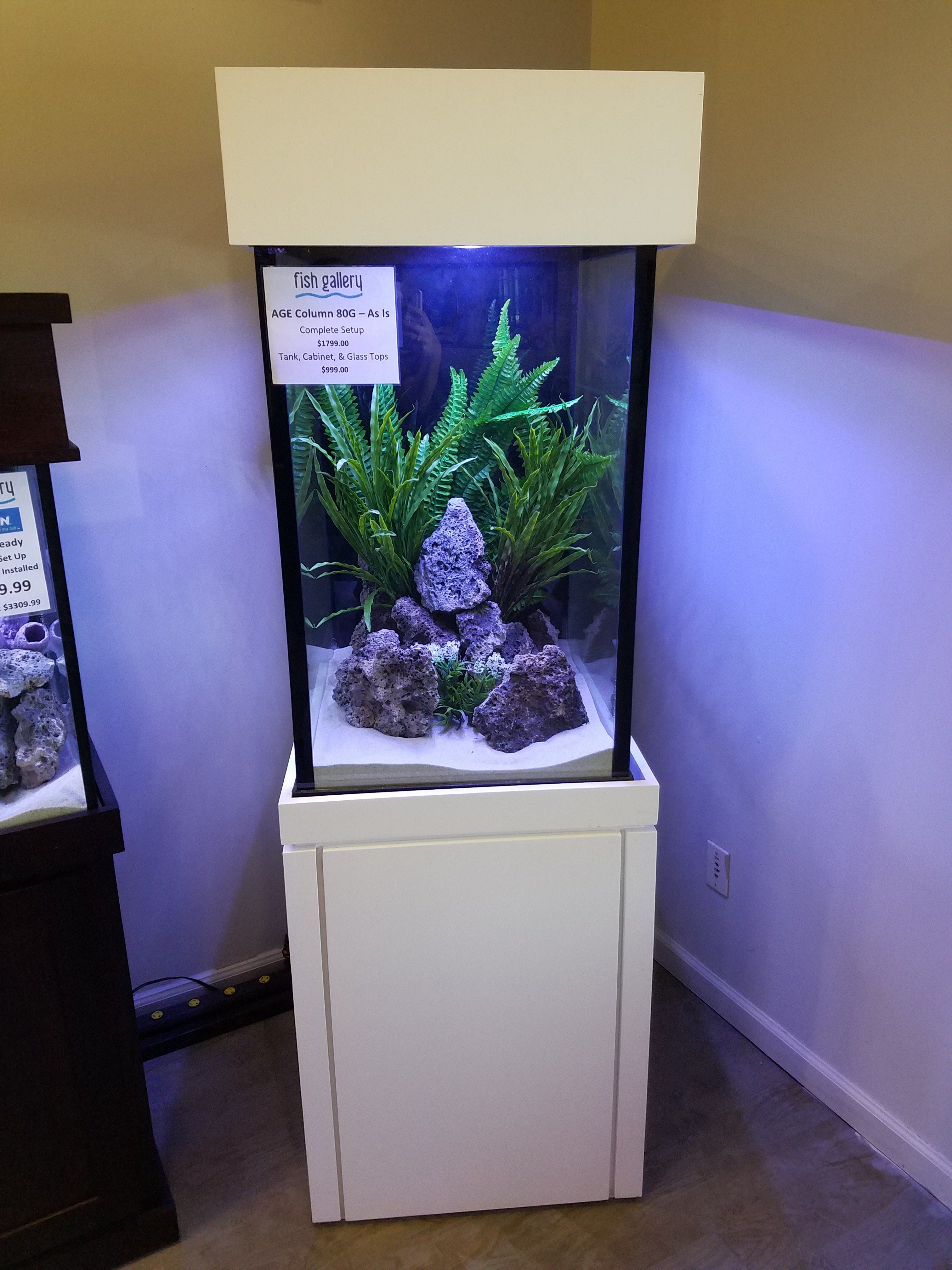 80 gallon fish tank
