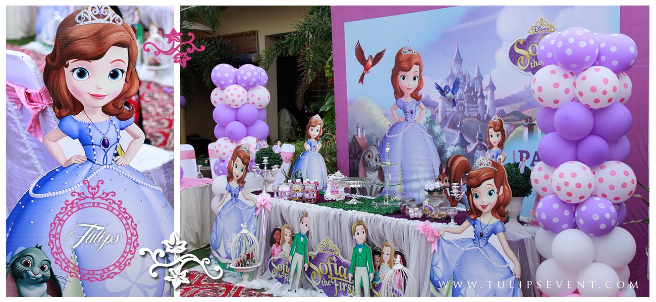 Sofia The First Birthday Party Theme For Baby Girls Themed Parties