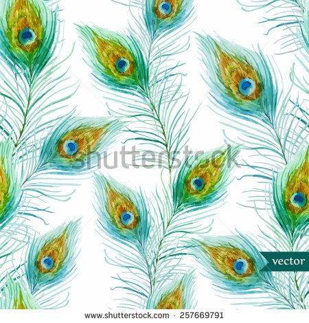 Peacock Stockillustraties & cartoons | Shutterstock