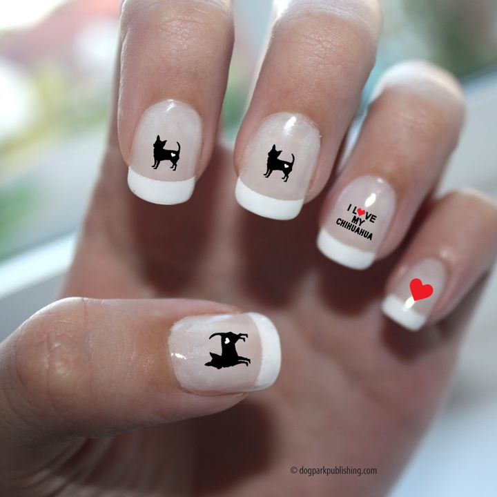 chihuahua nail art on hand.jpg (720×720)