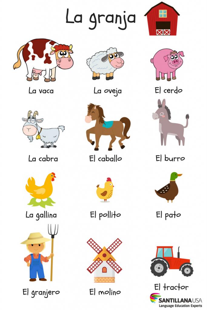 Pin By Lisbeth Estrada On Learn Spanish Learning Spanish Preschool Spanish Spanish Language Learning