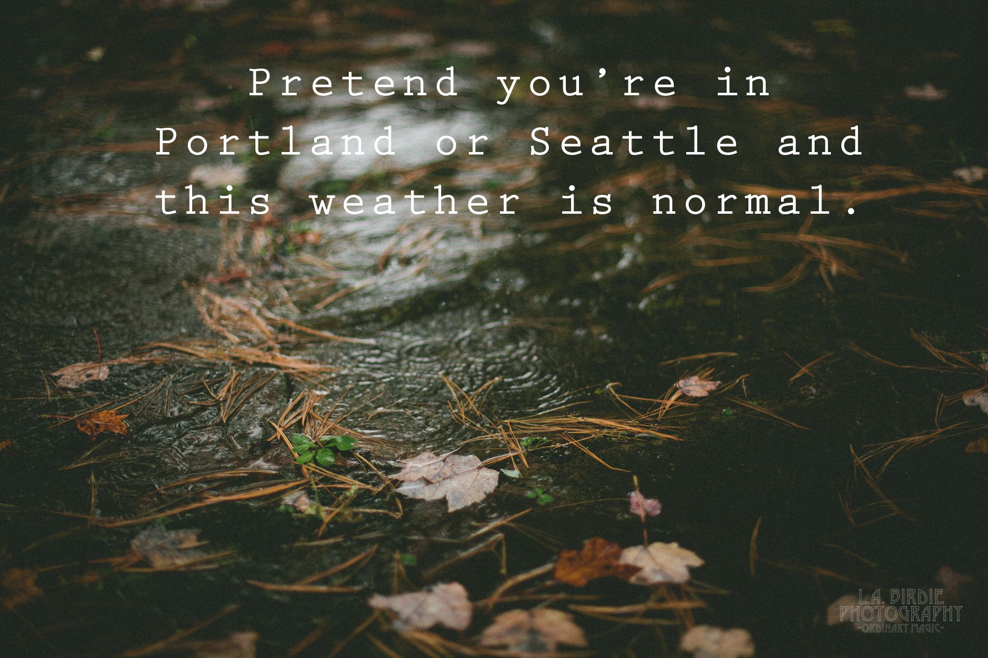 Rainy Day Quotes Google Search Hbrc Cold Weather Quotes