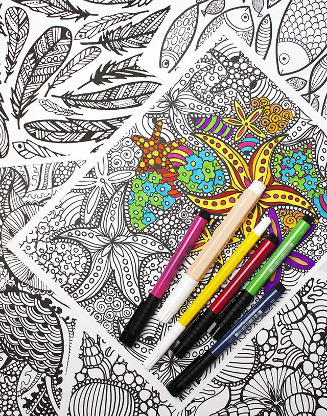 New Coloring Pages In The Shop