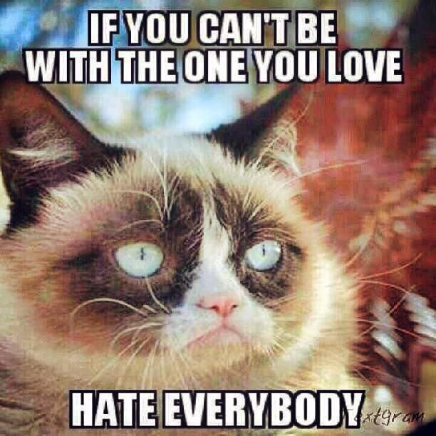 grumpy cat memes added a new photo with mike beatovic and 23 others