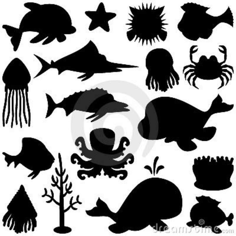 Marine Animals Silhouettes Set Animal Silhouette Fish Silhouette Marine Animals
