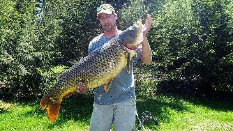 Largest catch in Vermont