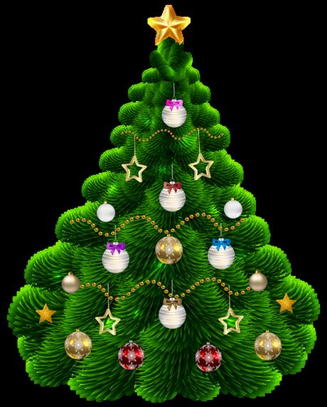 Sapin De Noël Christmas Tree Beautiful Christmas Trees