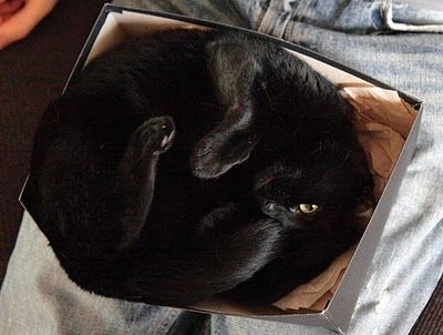 Sometime,  O-like positions compromise your box