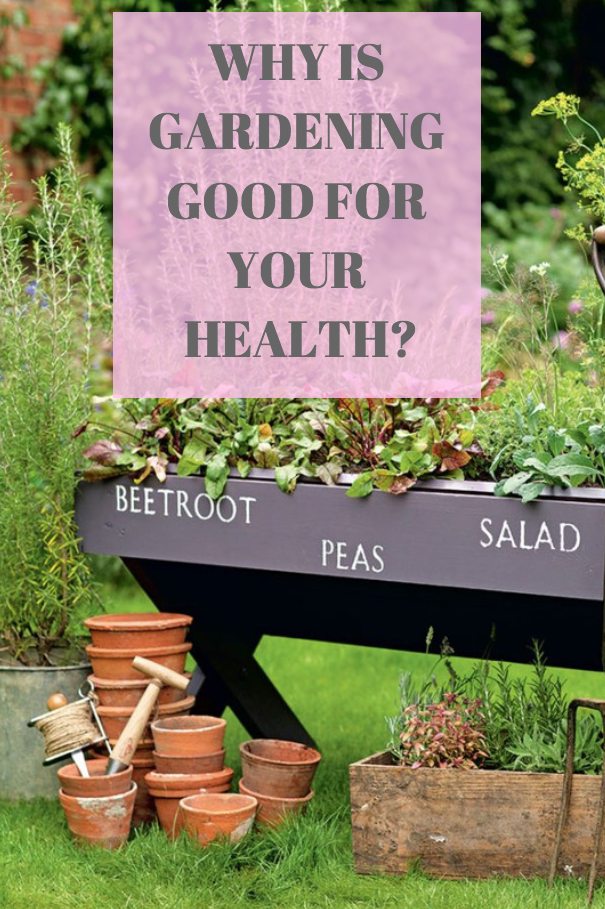 Why Gardening Is Good For Your Health Garden Exercise Healthy