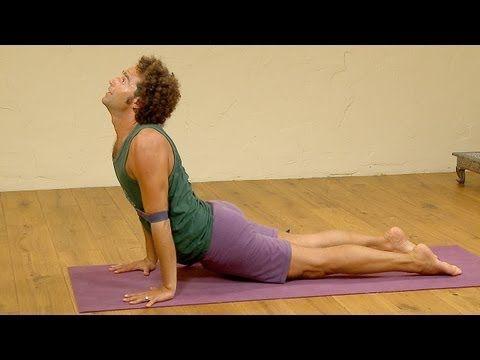 chaturanga workshop yoga with david lurey  free yoga