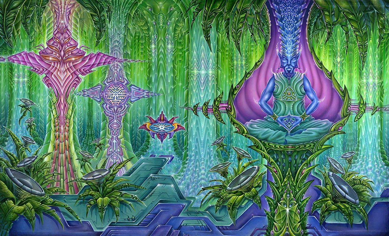 Psychedelic Spirit Paintings Alex Grey Art Gallery: Flowering DMT Containing Plants - Google Search