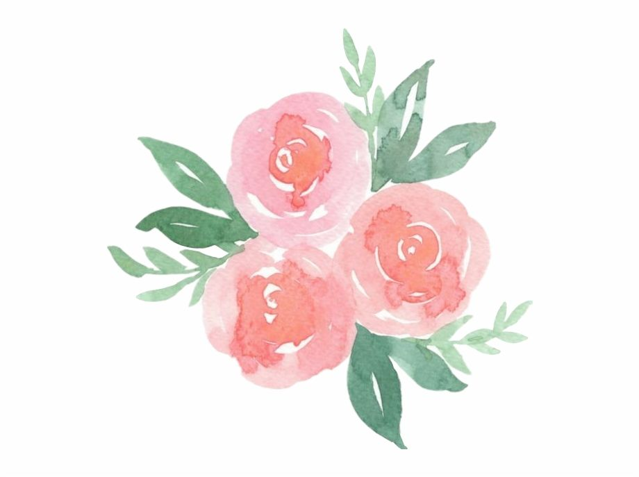 Scrose Rose Cute Aesthetic Pastel Pretty Flower Pastel Pink Flowers Png Transparent Png Is A Flower Aesthetic Floral Wallpaper Phone Pastel Aesthetic