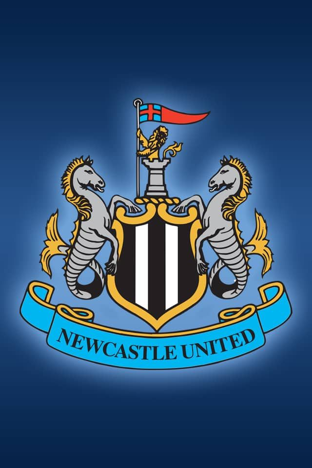 pinjulia on hd wallpapers in 2019 | newcastle united wallpaper