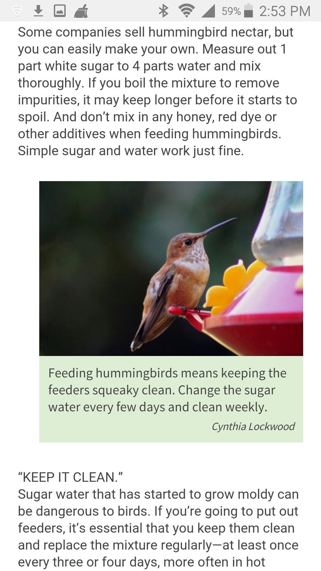 Article From Birds Blooms Magazine It S Extremely Important That You Keep The Feeders Cleaned Every Few Days Especi Hummingbird Nectar Hummingbird Fountains