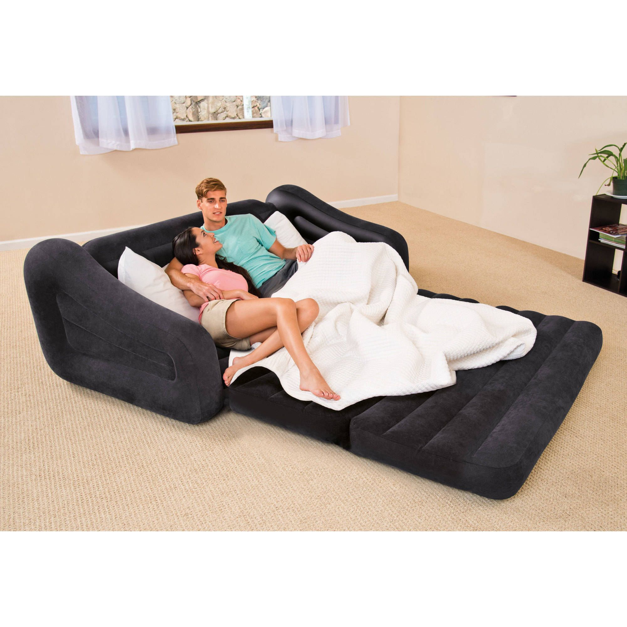 Best Pull Out Queen Sofa Bed Perfect 18 In Interior