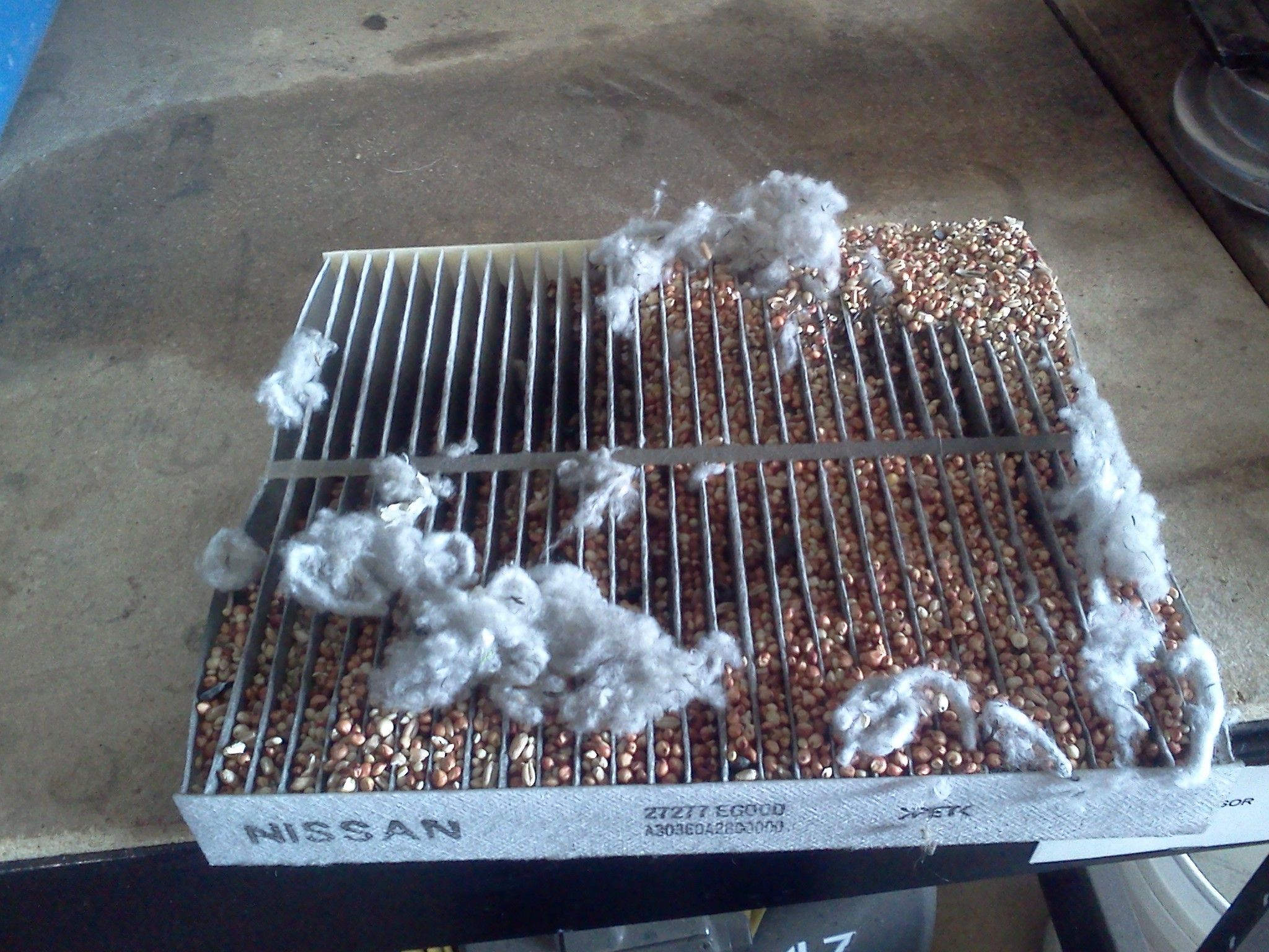 What does you cabin air filter look like? We pulled this