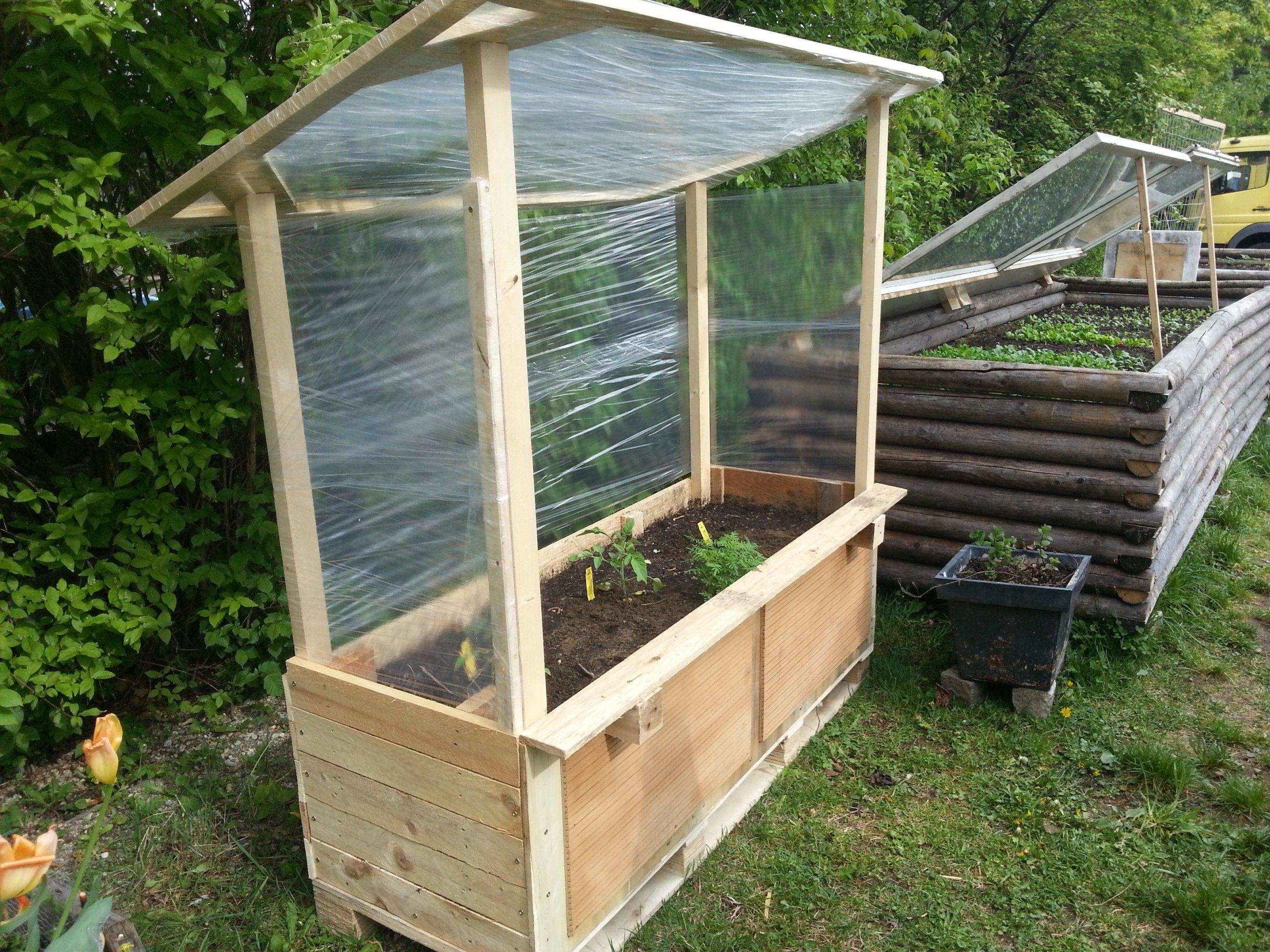 Tomatenhaus8   Tomatenhaus selber bauen, Tomaten haus, Tomatenhaus