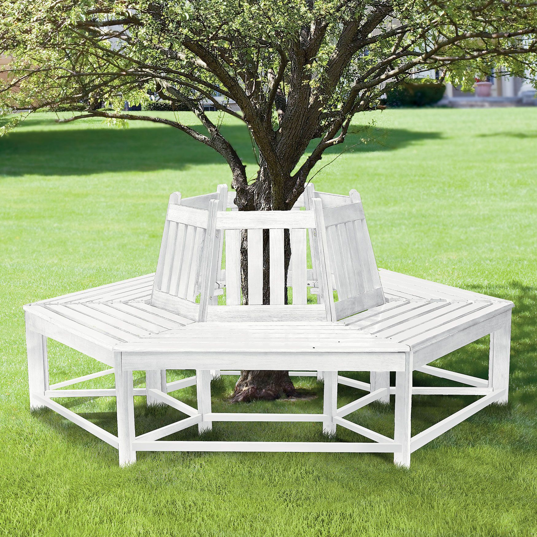 Surprising Half Wrap Wooden Tree Bench Furniture Brylanehome Home Squirreltailoven Fun Painted Chair Ideas Images Squirreltailovenorg
