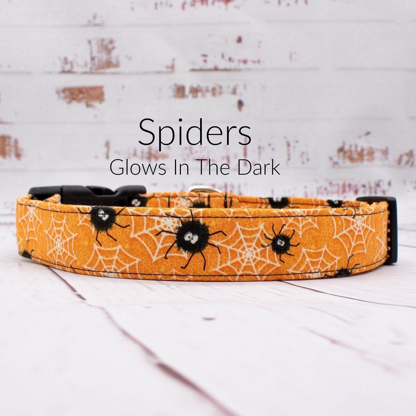 Halloween dog collar spooky spiders glows in the dark