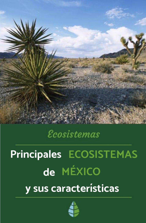 Principales Ecosistemas De México Y Sus Características Ecosistemas Tipos De Ecosistemas Ecología