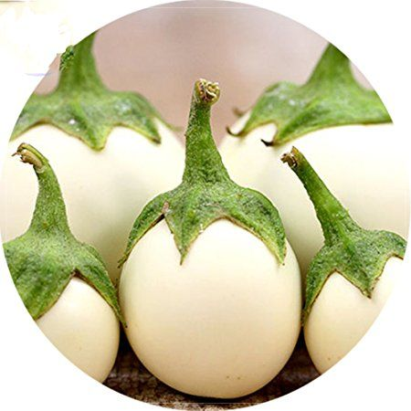 Best Garden Seeds Rare Lao White Eggplant Seeds Professional Pack 200 Seeds Hybrid Tasty Interesting Edible Eggplant