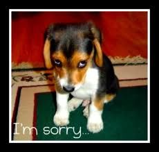 Do You Make Your Child Say I Am Sorry Even If They Are Not