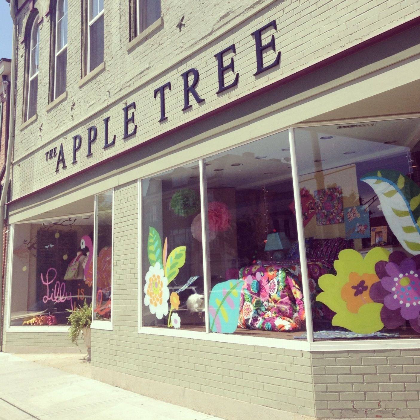 Loved The Va Bloom Windows Of Apple Tree In Oxford OH