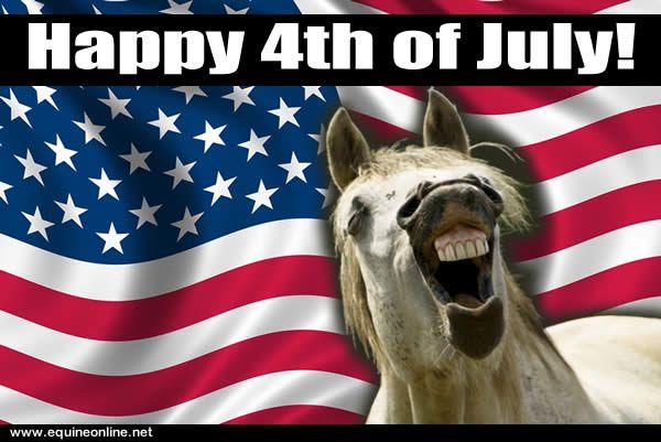 Funny Memes July : Minature theripy horses th of july happy