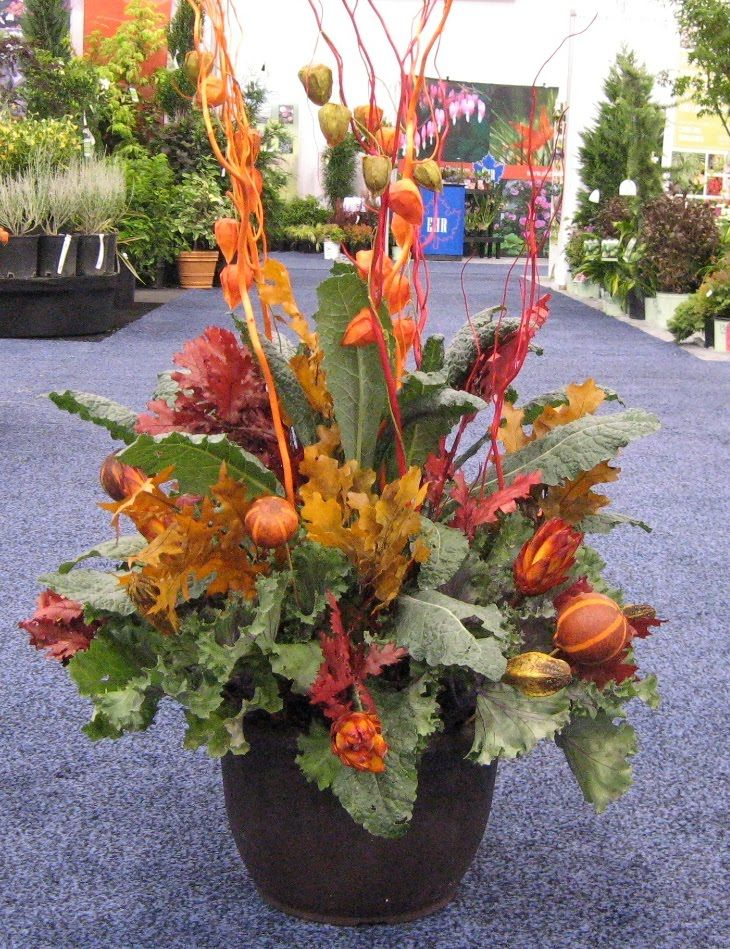 "IGC Show 2010 ""Best of Products"" Clesen Wholesale (With"
