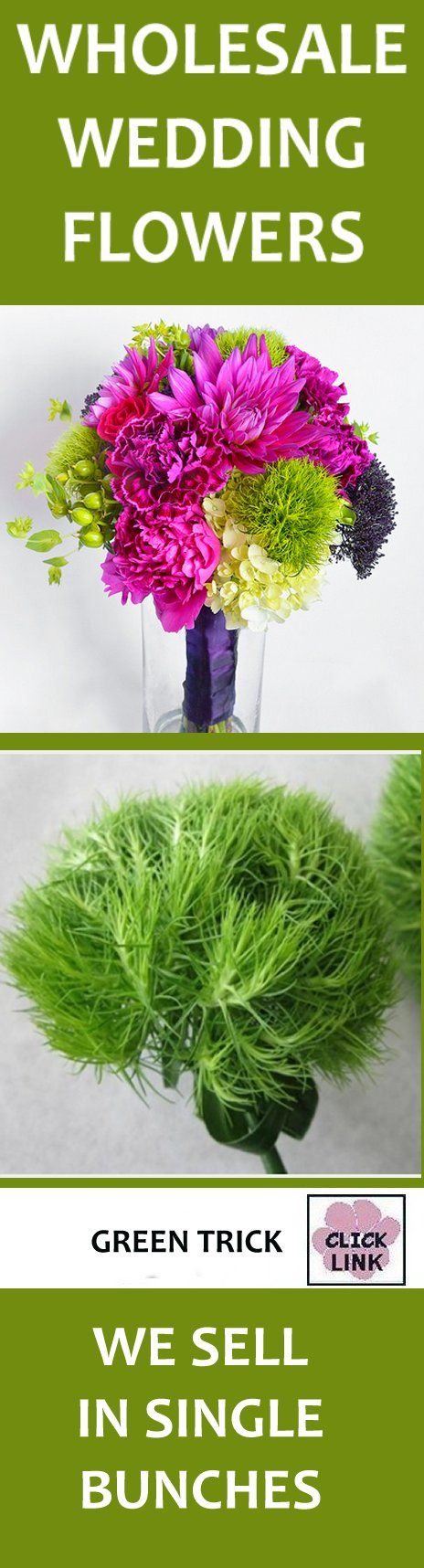 wedding flowers wholesale green trick dianthus neat flowers that add interest to your wedding bouquets