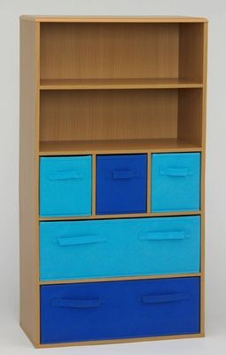 Buy Absolute Customary Styled Boy?s Storage Book Case