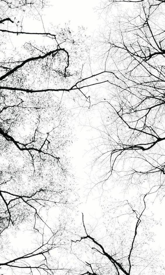 Tiefgang Bilder Hintergrundbilder Hintergrund Weiss