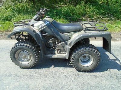 SUZUKI OZARK 250 Quad Bike ATVs In Totnes Auto Trader Farm