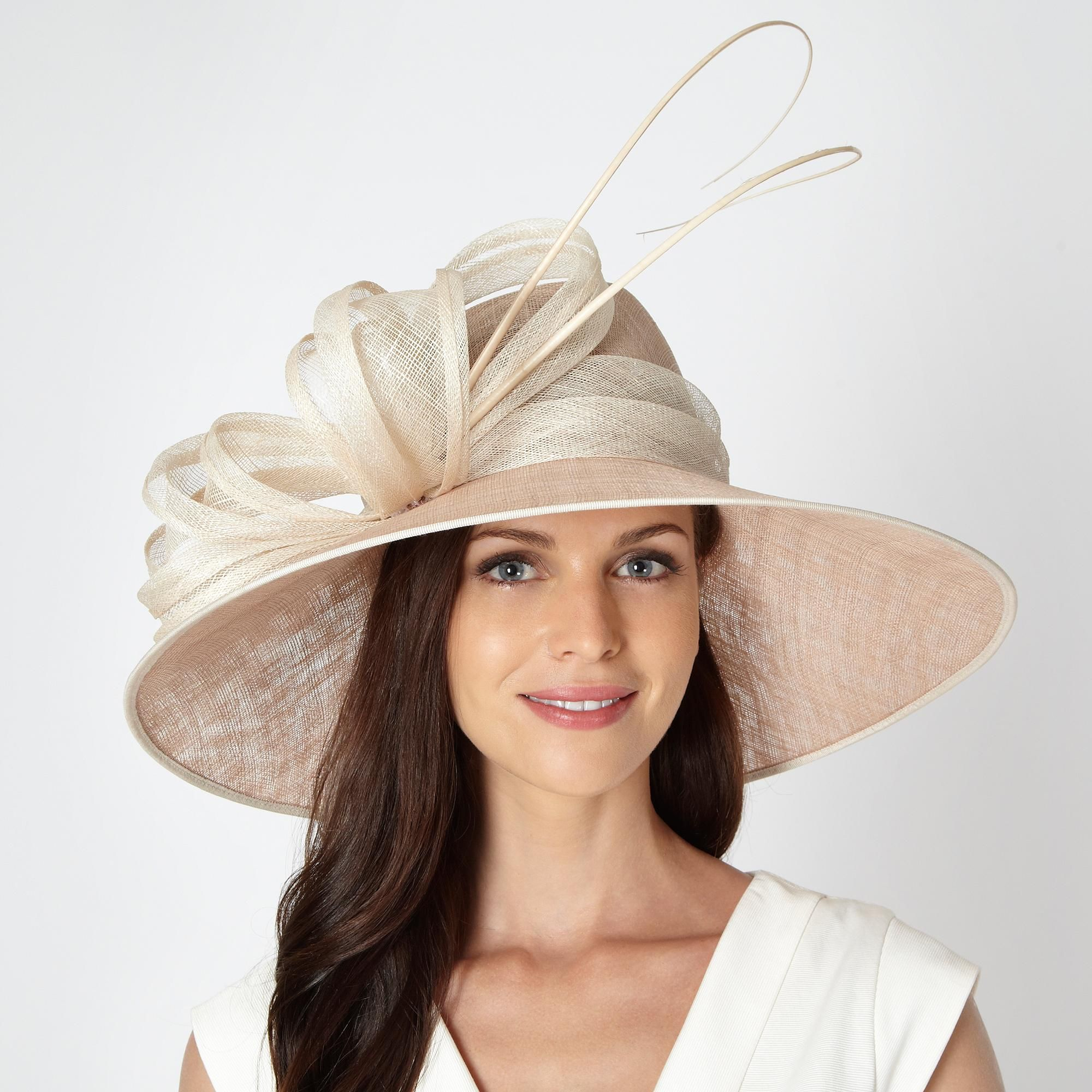 Taupe large pleated coil hat - Occasion hats - Debenhams.com