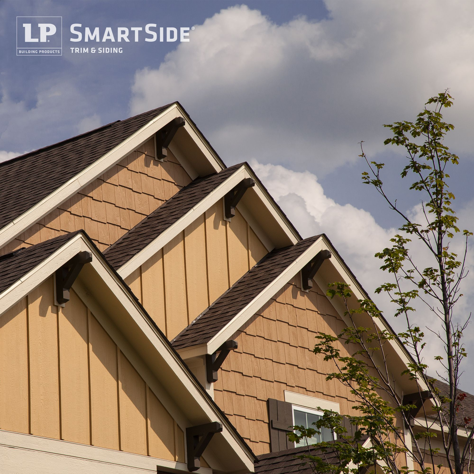 A Staggering Of LP SmartSide Cedar Shakes And Panel Siding