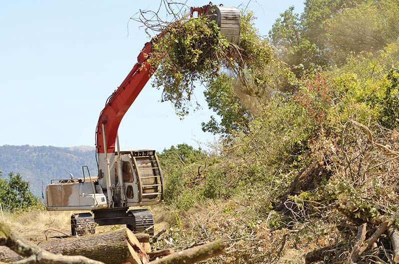 A top notch debris removal service is one phone call away