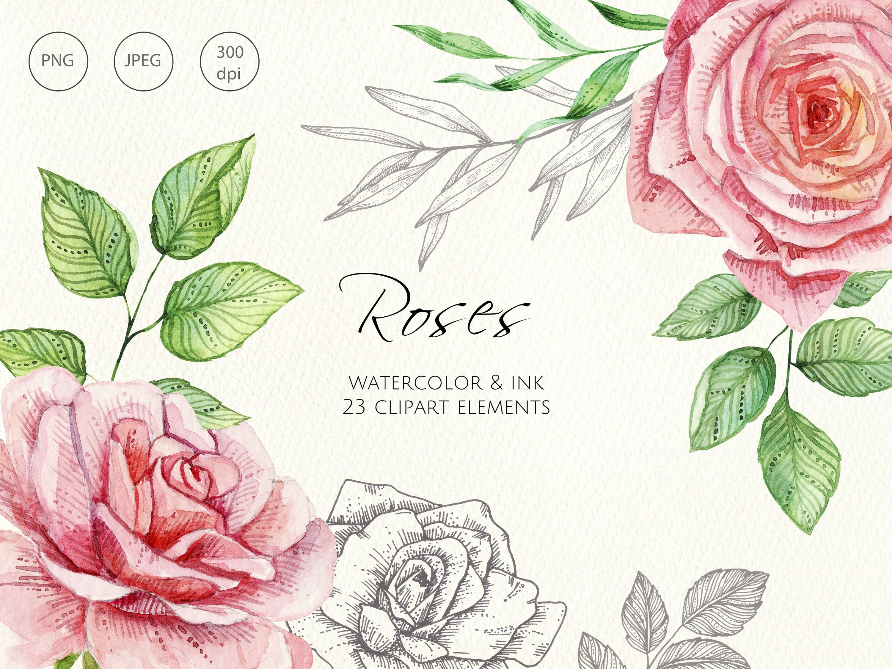 Watercolor Roses Flowers Isolated Roses Png Flowers Png Etsy Watercolor Rose Linear Art Watercolor And Ink