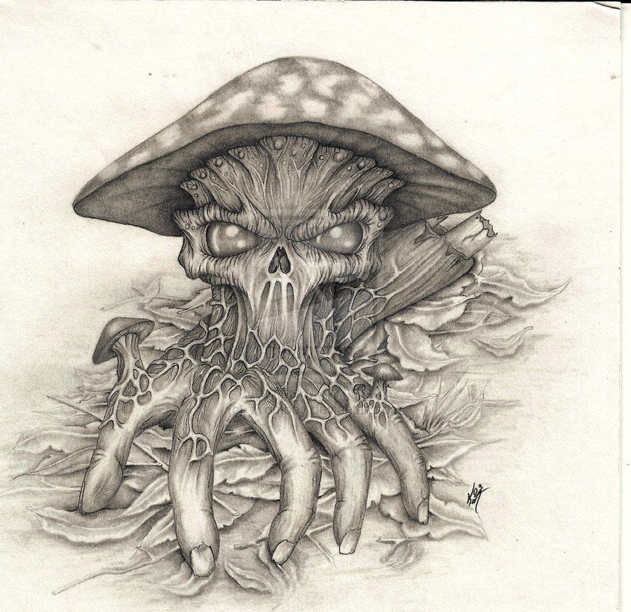 cool shroom drawings google search kool drawings