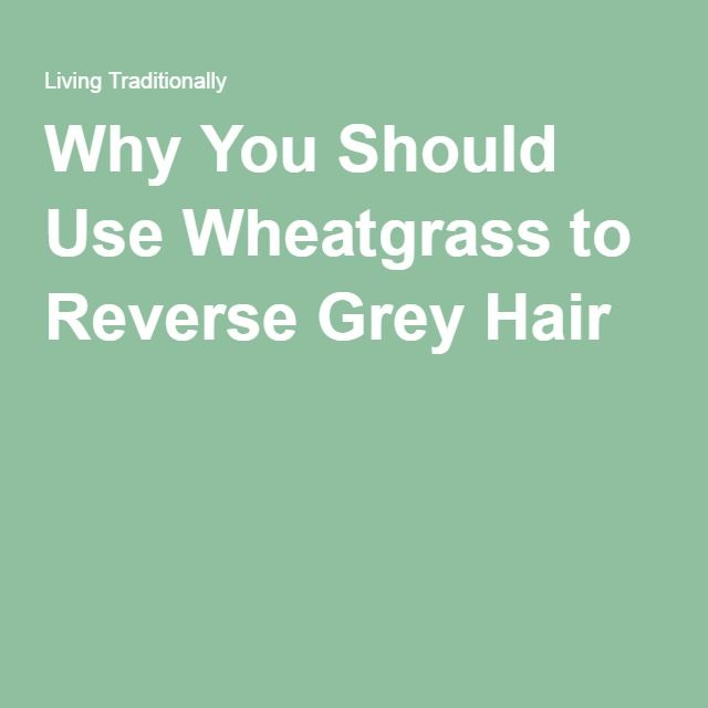 Why You Should Use Wheatgrass to Reverse Grey Hair