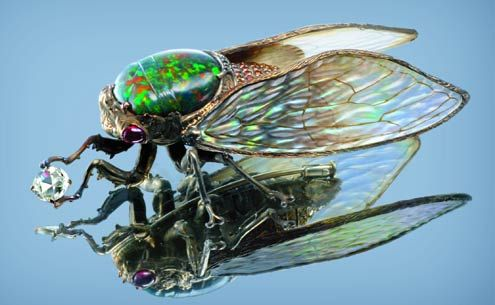Wallace Chan of Hong Kong,,,,cicada brooch