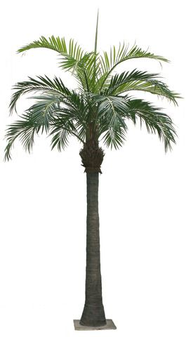 Large Metal Outdoor Palm Tree Home 3m 10ft Large Artificial Coconut Palm Tree Photoshop Palm Tree Png Palm Trees