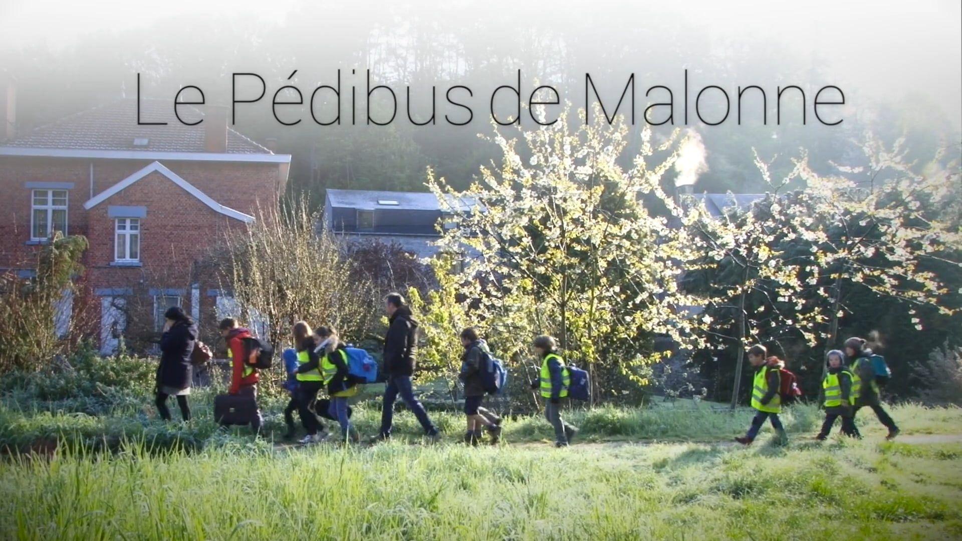 Pédibus de Malonne Concert