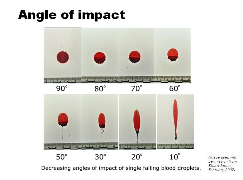 blood angles | Drawing | Forensic science, Forensics ...