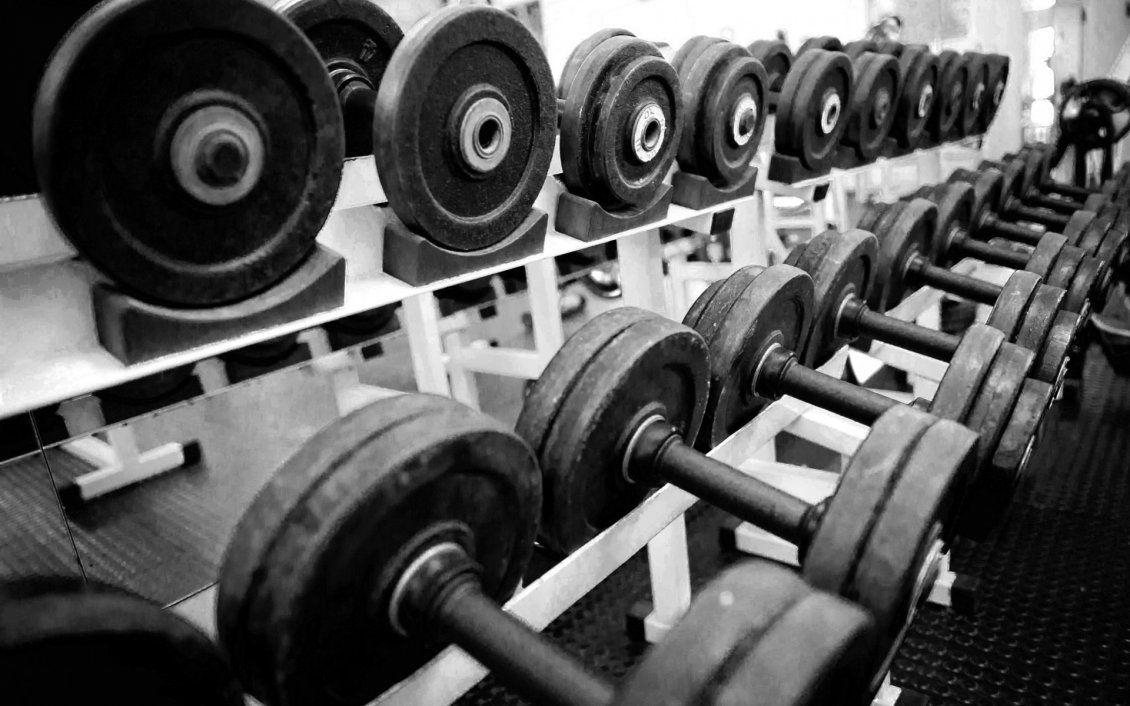 Обои russian dumbbells, gym. Спорт foto 17