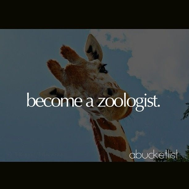 If you love animals then become a zoologist They work with animals
