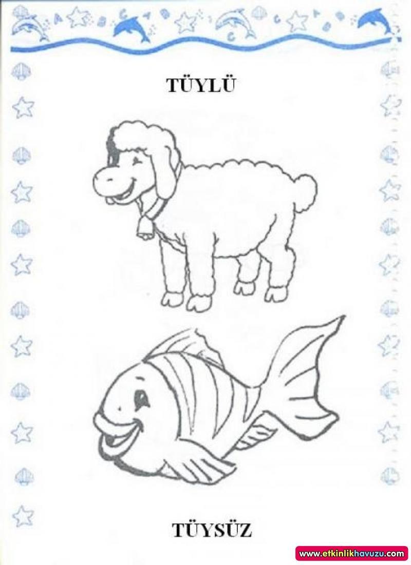 Okul öncesi Tüylü Tüysüz Hayvanlar Boyama Ile Ilgili Görsel Sonucu