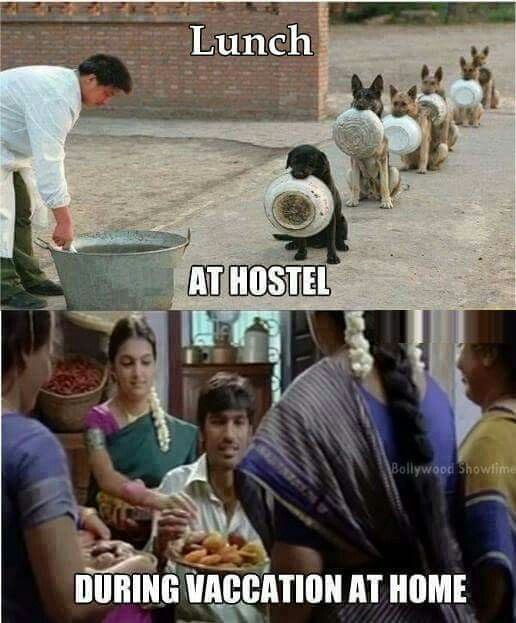 Hostel Vs Home Life Funny Students Pinterest Hostel Funny And