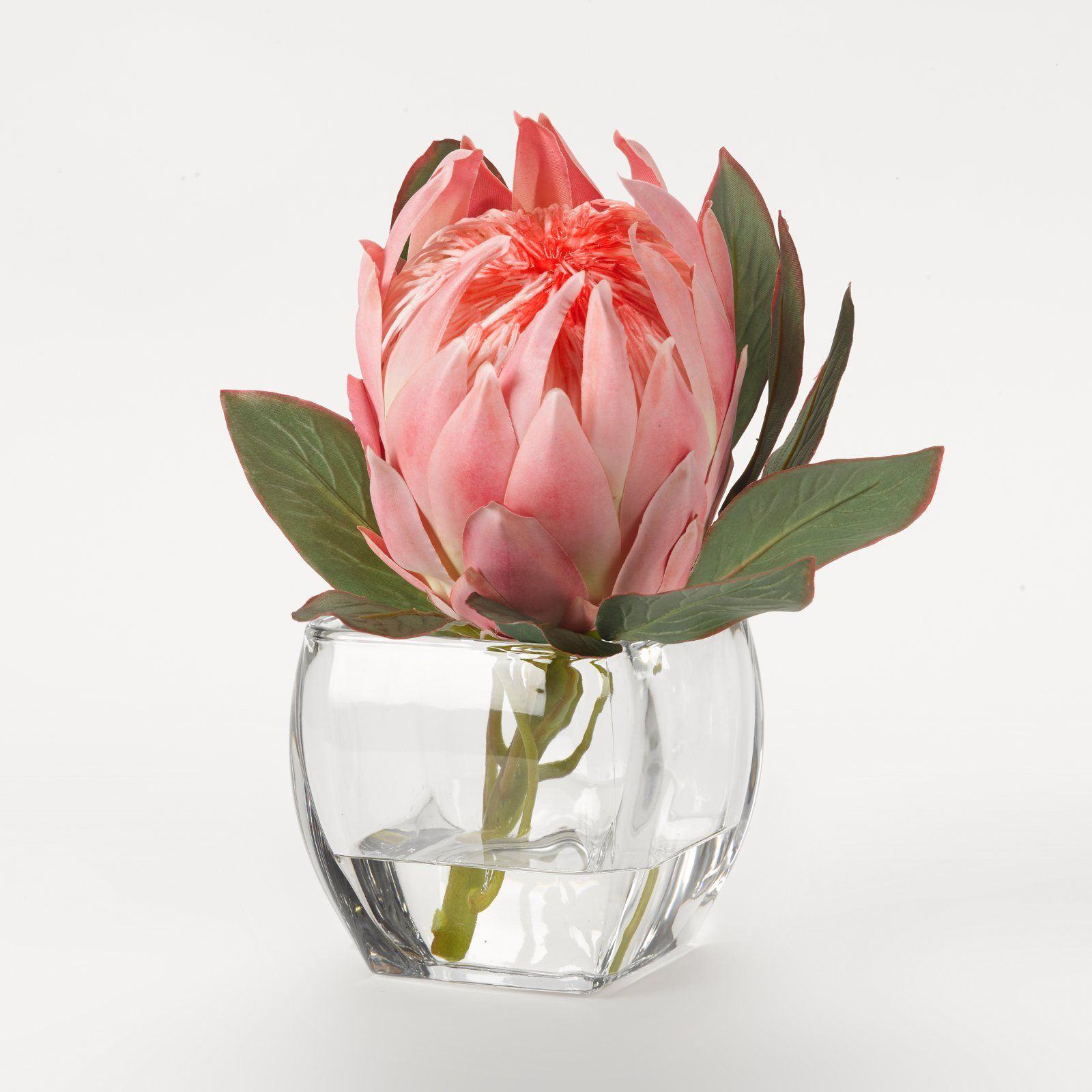D And W Silks Artificial Queen Protea In Glass Cube Pink Protea Flower Glass Cube Rose Floral Arrangements