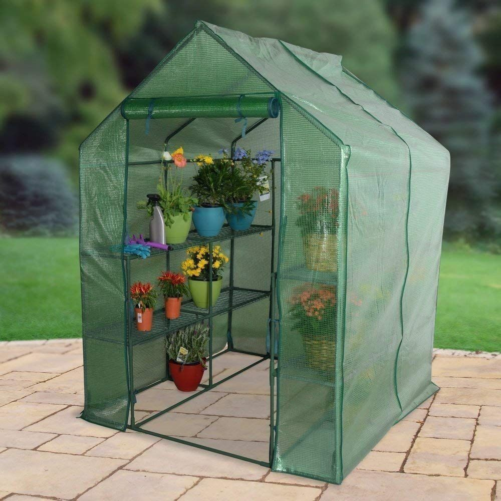8 X 6 Dome Walk In Greenhouse Garden Plant Shed Vegetables Grow Tent Backyard Ebay Walk In Greenhouse Greenhouse Indoor Greenhouse