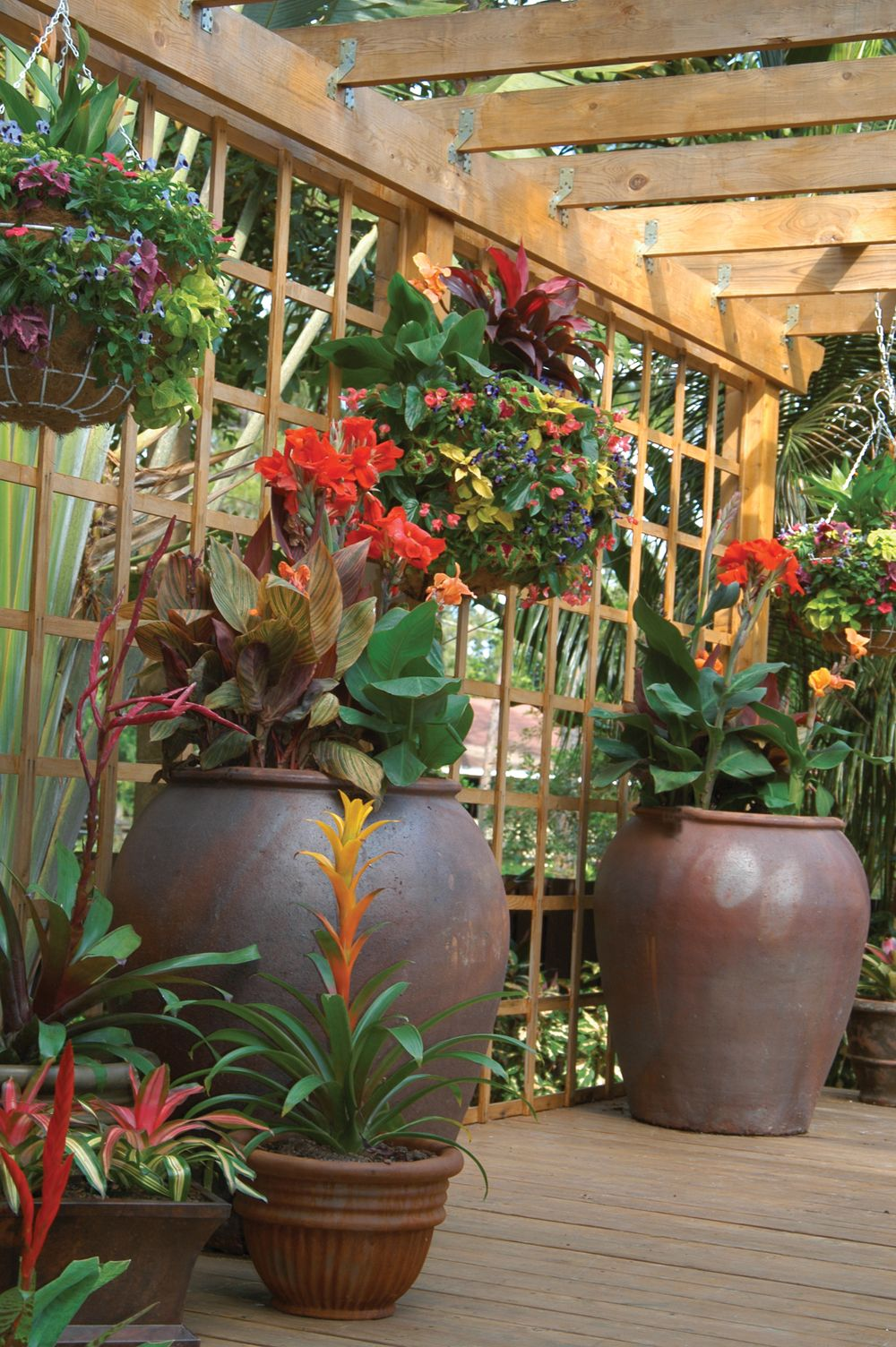 This Palm Beach County Container Garden Features Tropical Plantings